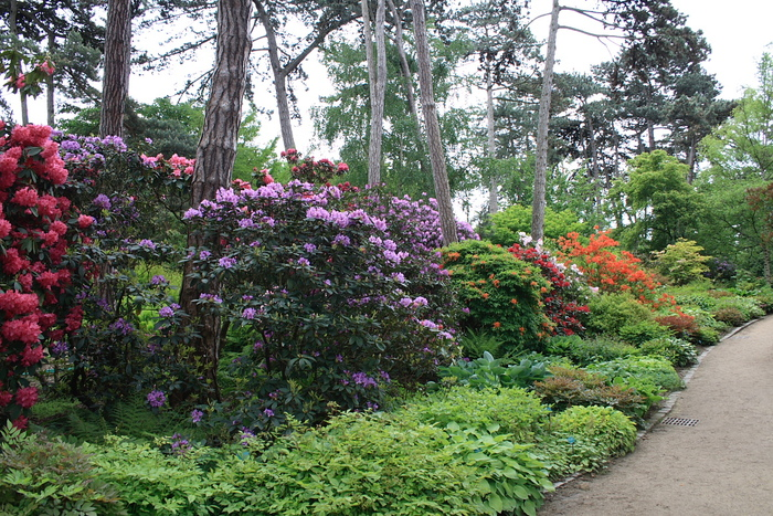 Nouvelle promenade au parc floral