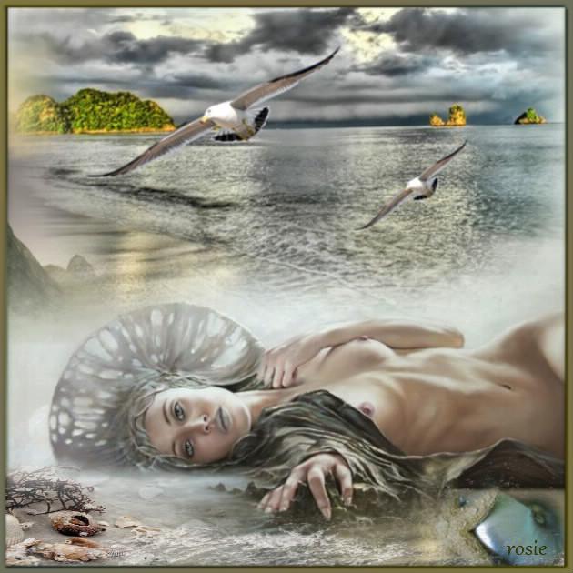 la femme-coquillages