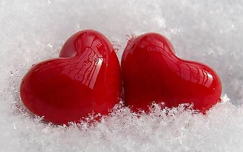 L'amour on ne se choisit pas par hasard