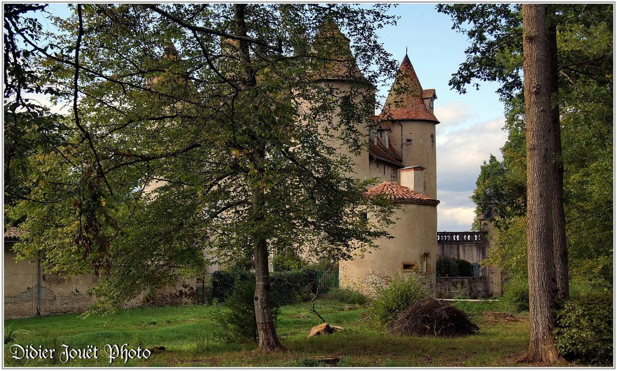 (63) Puy de Dôme -  Courpière (1) - Château de la Barge