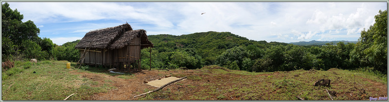 Sur les hauteurs d'Antanambe (ou Antanabe) : habitations - Nosy Sakatia - Madagascar
