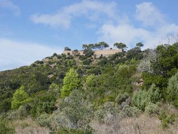 Et à notre droite, plus haut, le Fort de la Gavaresse