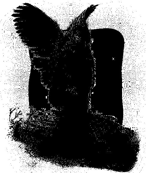 tube poupee
