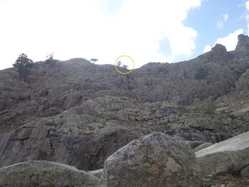 La paroi que nous venons de descendre depuis le pin entouré du cercle jaune