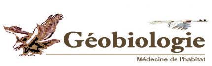 Geobiologie Les Cheminees Cosmo Telluriques Nourriture Et