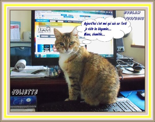 Juliette webmaster...