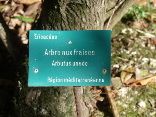 EUGENIE les Bains - Landes -