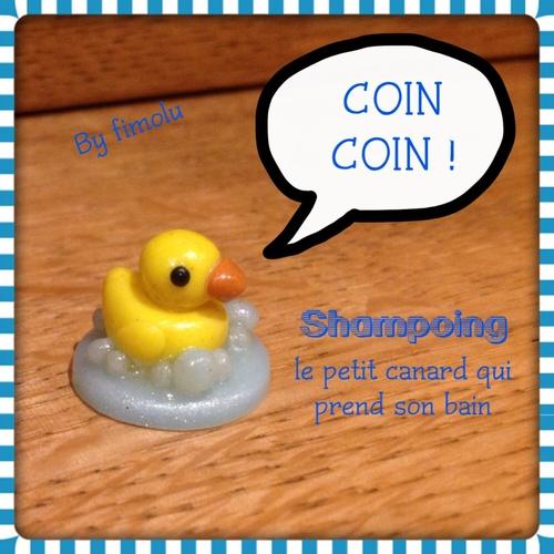 création 2014-5: shampoing le petit canard <3