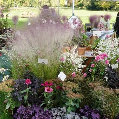 Journées des plantes de Chantilly : une merveilleuse édition d'automne 2017...