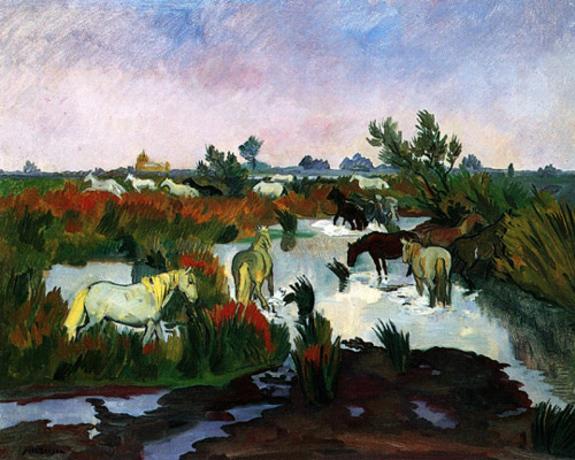 Manade de chevaux dans les marais