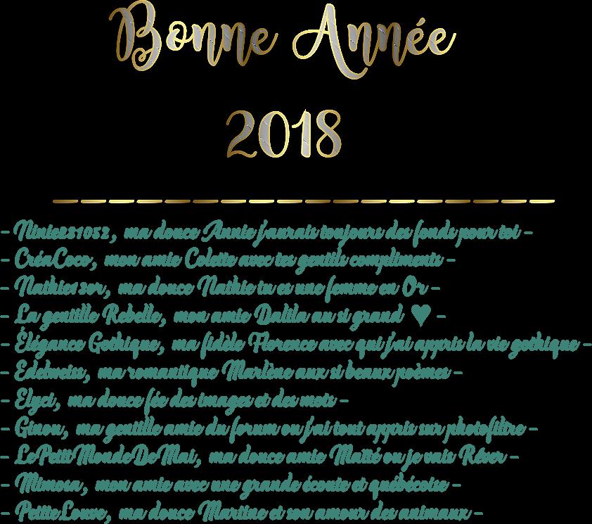 ♥ Bonne Année 2018 ♥