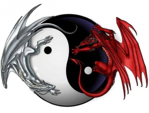 Mes rêves de dragon