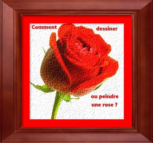 Dessin et peinture 2266 : Comment dessiner une rose, étape par étape, au crayon de couleur ?.