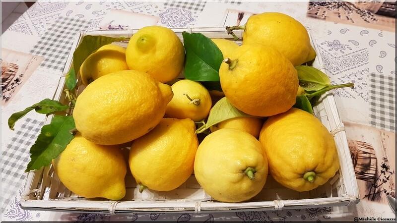 Limoncello - liqueur de citrons