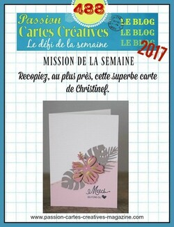 Passion Cartes Créatives#488 !