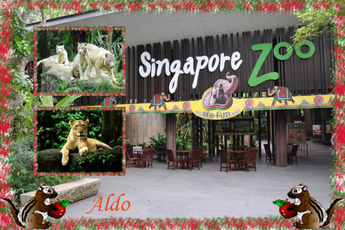 PPS Singapore zoo