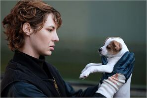 Je suis un soldat : Photo Louise Bourgoin