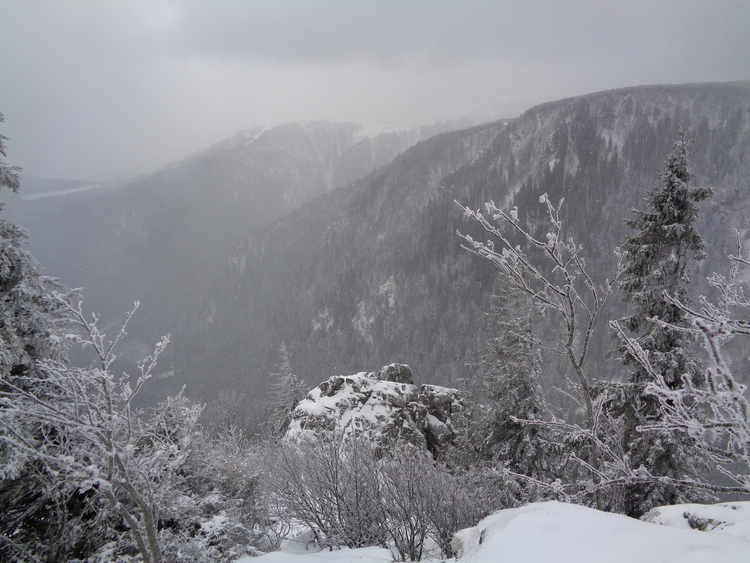 Vosges- silence hivernal