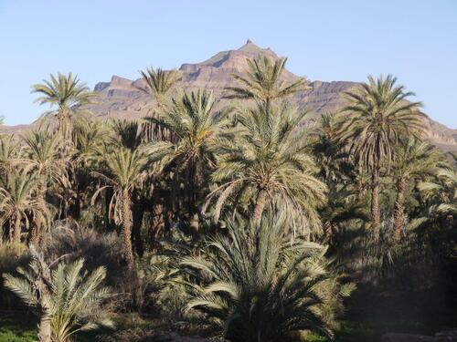 Cime du Djebel Kissane