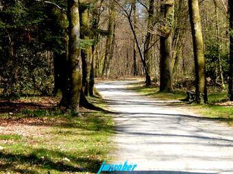 Limoges: Randonnée au bois de la Bastide et d'Uzurat sans sortir de la ville sous ce beau soleil printanier