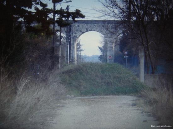 photo 1565-web