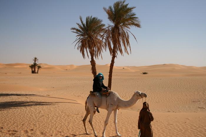 Le Sahara de nos 20 ans de Michel Mariet