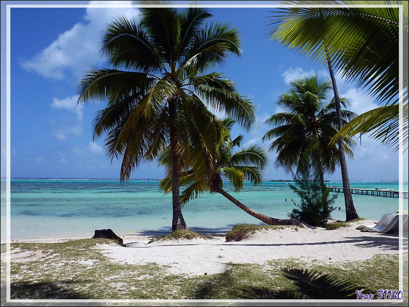 Le lagon et le ponton vus de l'hôtel et le lagon et l'hôtel vus du ponton - Les Tipaniers - Moorea - Polynésie française