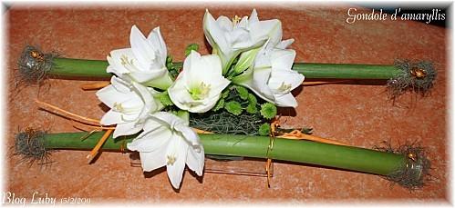 2011 15 02 gondole amaryllis 2