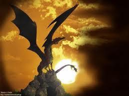 Exposé sur les dragons
