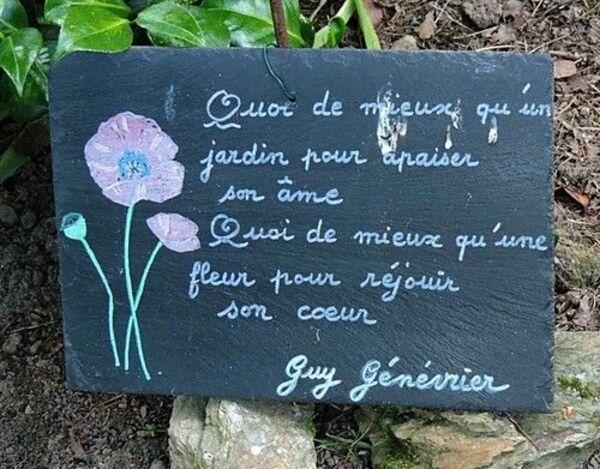 """Une fleur pour un jardin """"à plumes"""""""