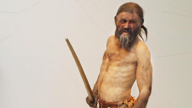 La police de Munich résout un meurtre vieux de 5.300 ans