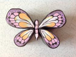 Etre un papillon et te donner des ailes ...