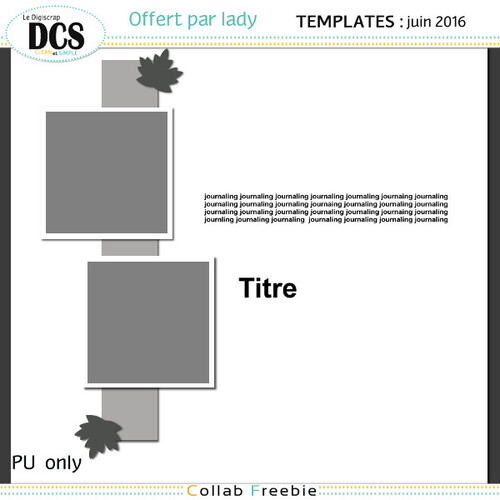 DCS Templates juin 2016