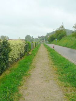 Le chemin du Rossignol