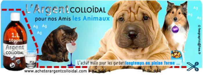 L'ARGENT COLLOÏDAL POUR LES ANIMAUX DE COMPAGNIE