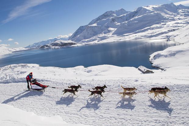 Bonjour....   avec les chiens de traîneau au pays du Mont Blanc