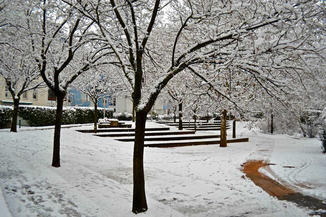 2014.02.02 Première neige!