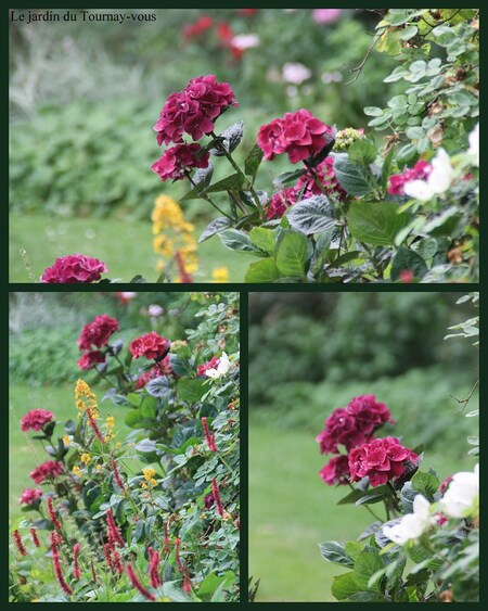 Jardin du Tournay-Vous