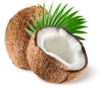 La coco a tout bon !!!
