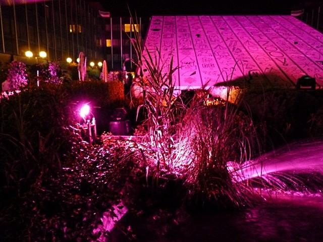 Metz nuit blanche 2011-1 - Marc de Metz 6
