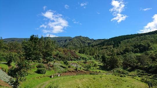 L'image contient peut-être: montagne, nuage, ciel, arbre, herbe, plein air et nature