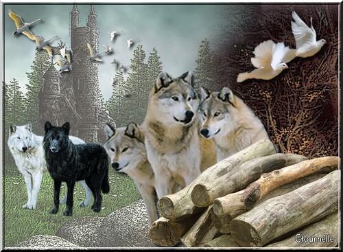 """Défi """"La balade des loups"""""""