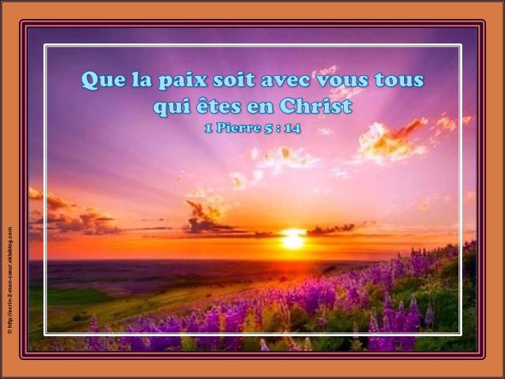 Que la paix soit avec vous ! 1 Pierre 5 : 14