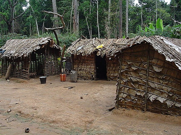800px-Pygmy house outsideview