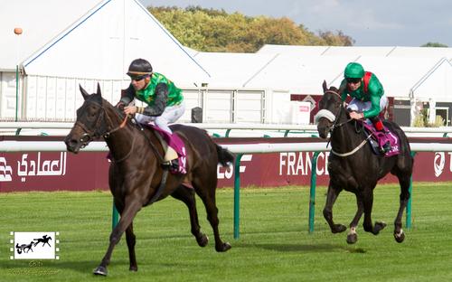 Qatar Prix de Royallieu