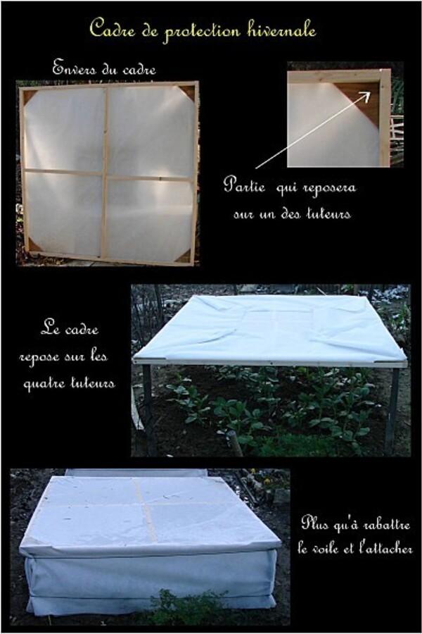 cadre-de-protection-hivernale--copie-1.jpg