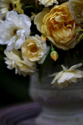 Romantic Yellow