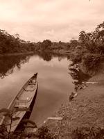 Selva Cuyabeno
