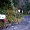 Début de la route forestière du Bitet (749 m) en bordure de la route D 934