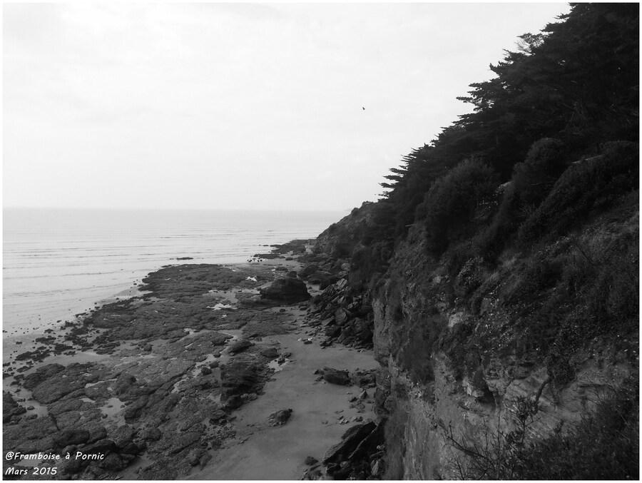 Balade sur le littoral pornicais mars 2015